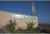 Domaine Roc de Gachonne
